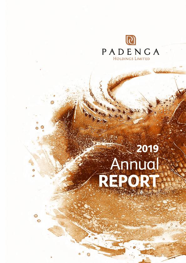 Padenga Holdings Limited (PHL.zw) 2019 Annual Report