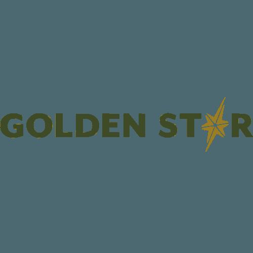 Golden Star Resources Limited Gsrgh Africanfinancials