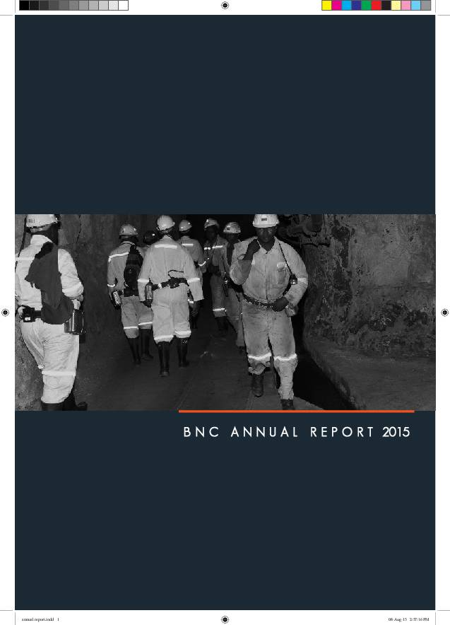 Bindura Nickel Corporation Limited 2015 Annual Report