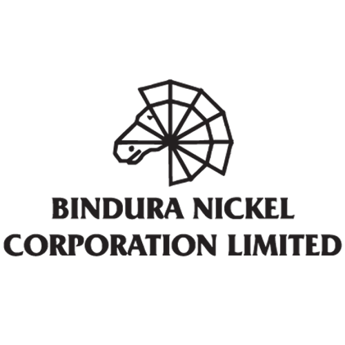 Bindura Nickel Corporation Limited (BIND.zw)